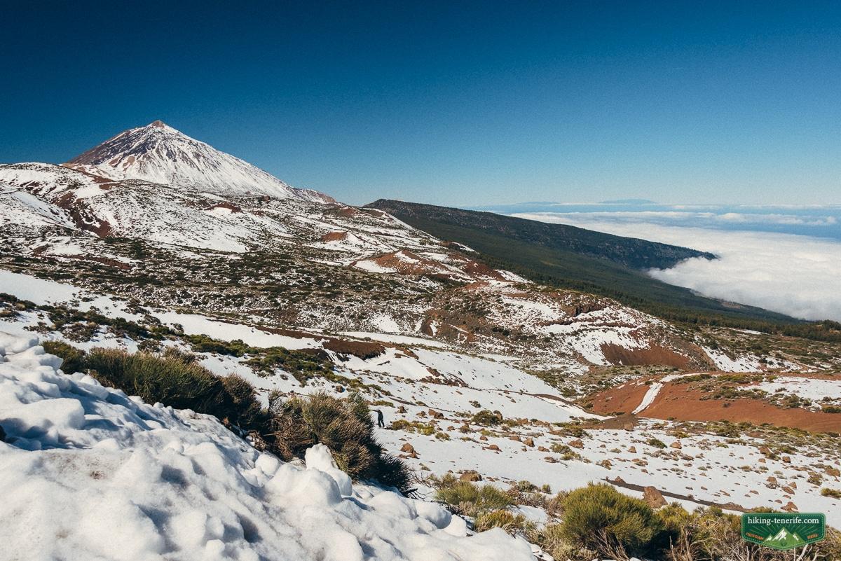 Температура воды и воздуха на Тенерифе по месяцам