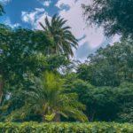 Второй Ботанический сад Испании