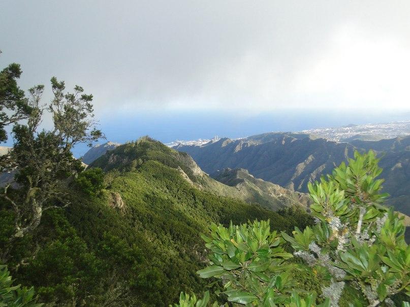 Чудо-остров Тенерифе