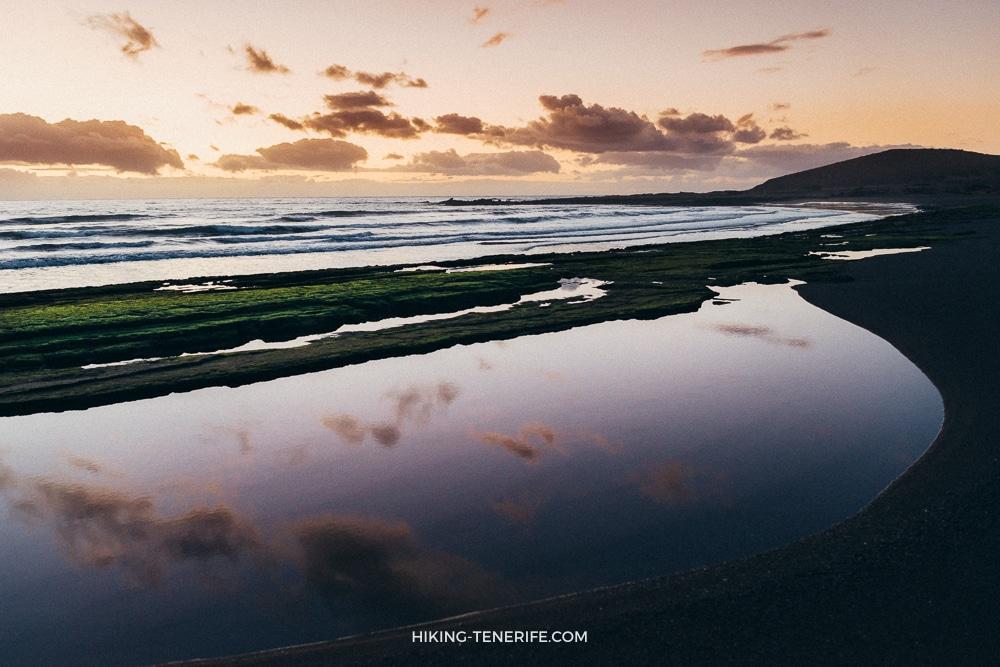 dsc 8711 - Серфинг на Тенерифе: споты, школы и лайфхаки