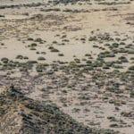 8 ярких развлечений осени на Тенерифе