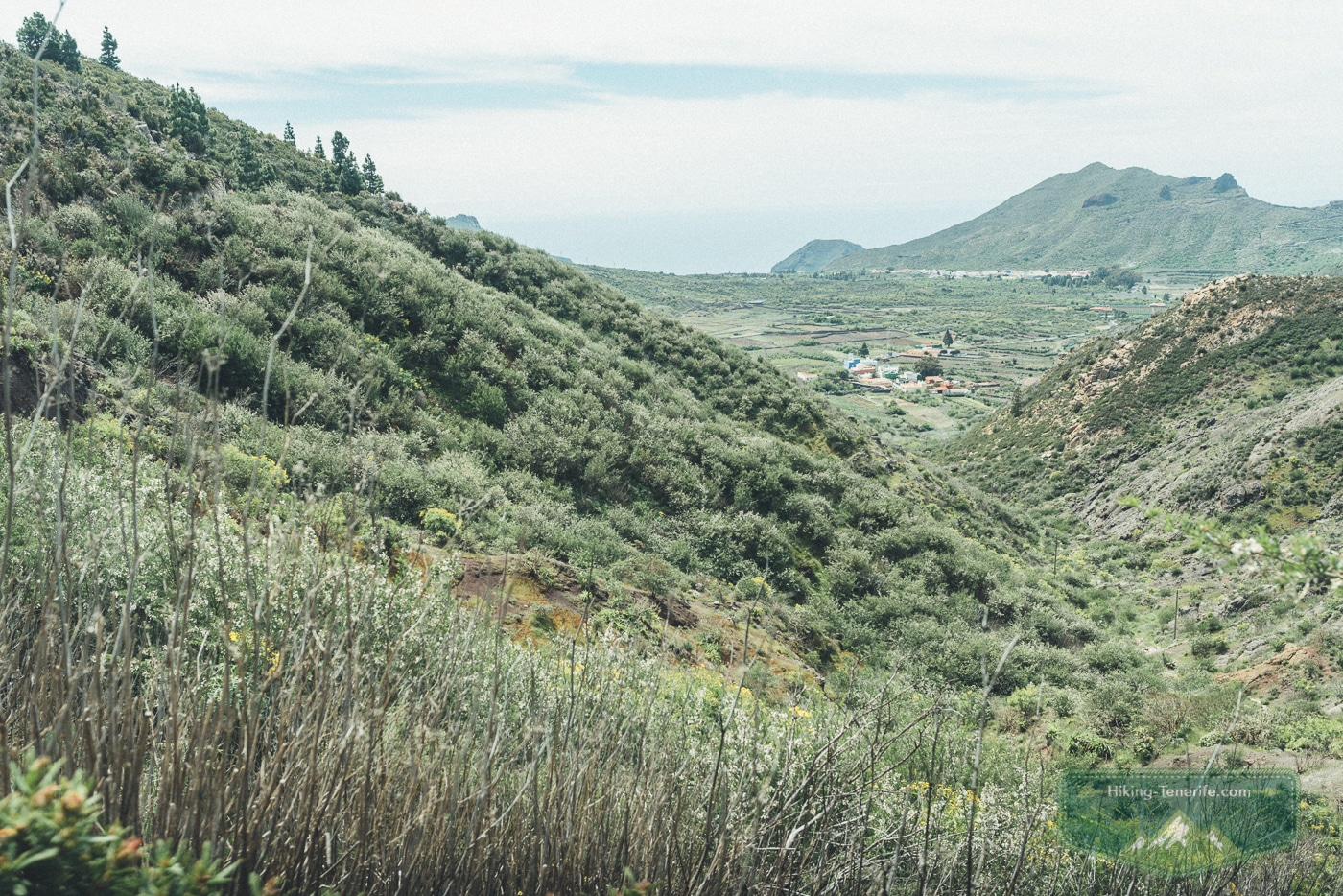 поход рядом с сантьяго дель тейде