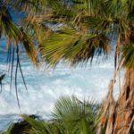 Тенерифе — рай. Рассказ о любви к острову
