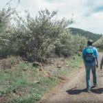 Поход по весеннему Тенерифе