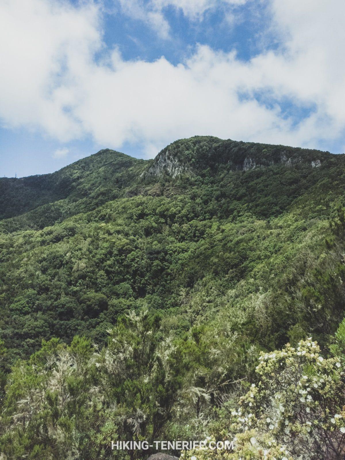 запад Тенерифе