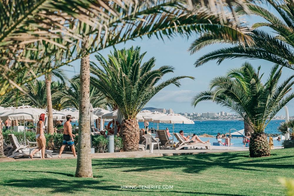 20190810 DSC 6375 - Пляж Эль Берил в Коста Адехе