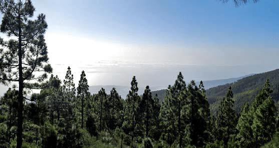 Cumbres del Sur o Chimague