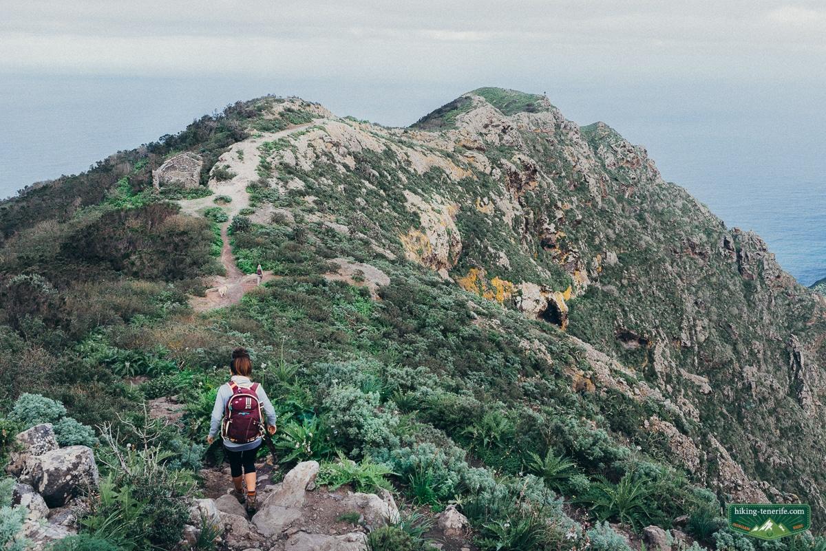 dmitry gurov hiking-tenerife.com