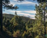 долина Оротава и Тейде